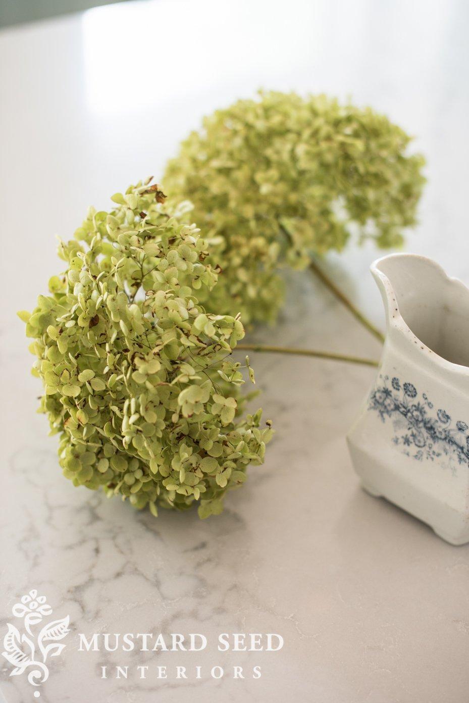 how to dry hydrangeas   miss mustard seed