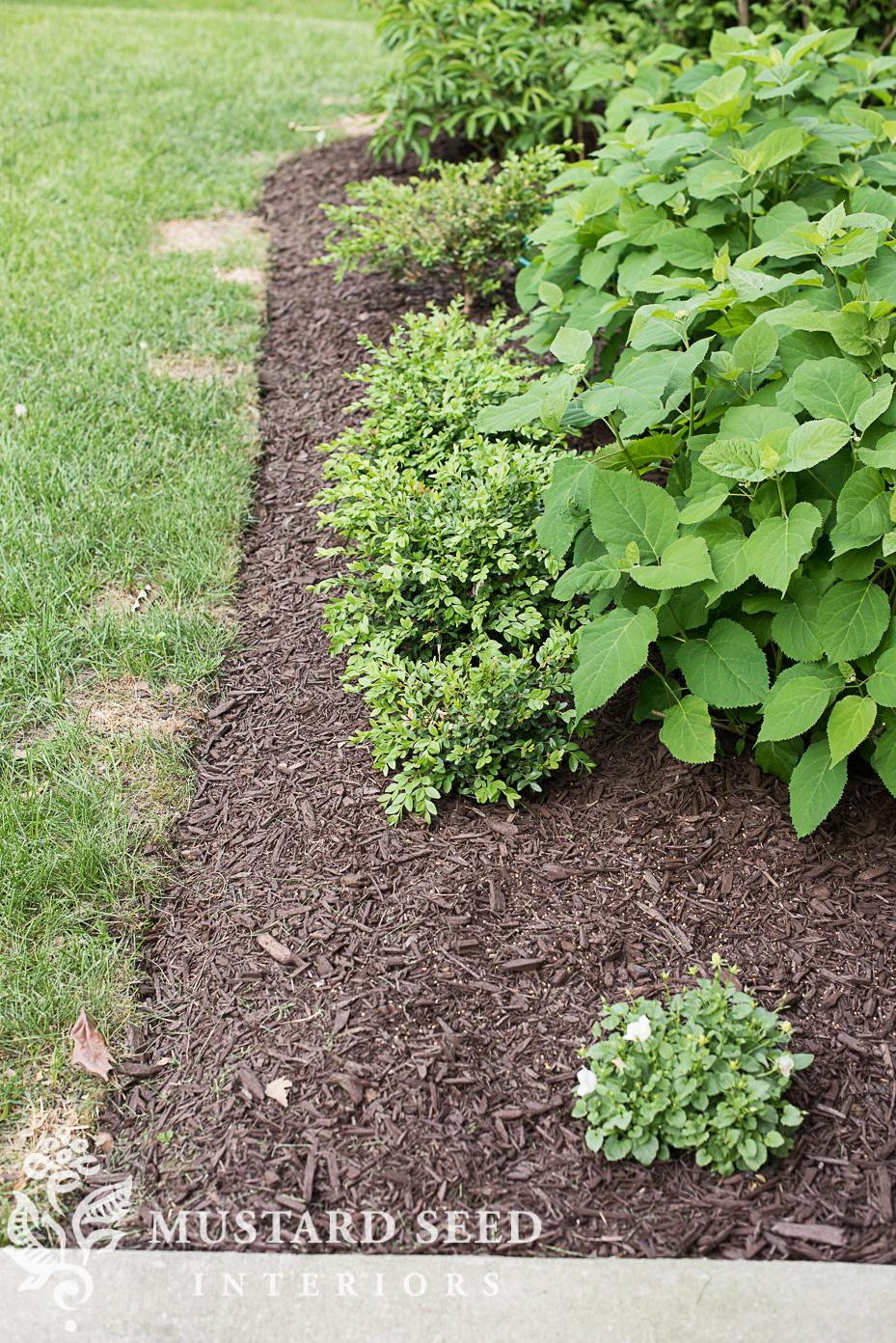 garden edging after miss mustard seed favorites