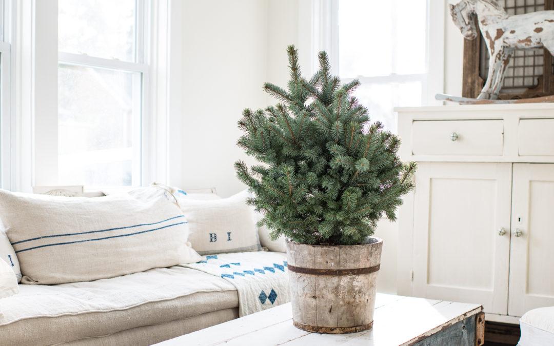 Non-Christmas Holiday Decor Ideas