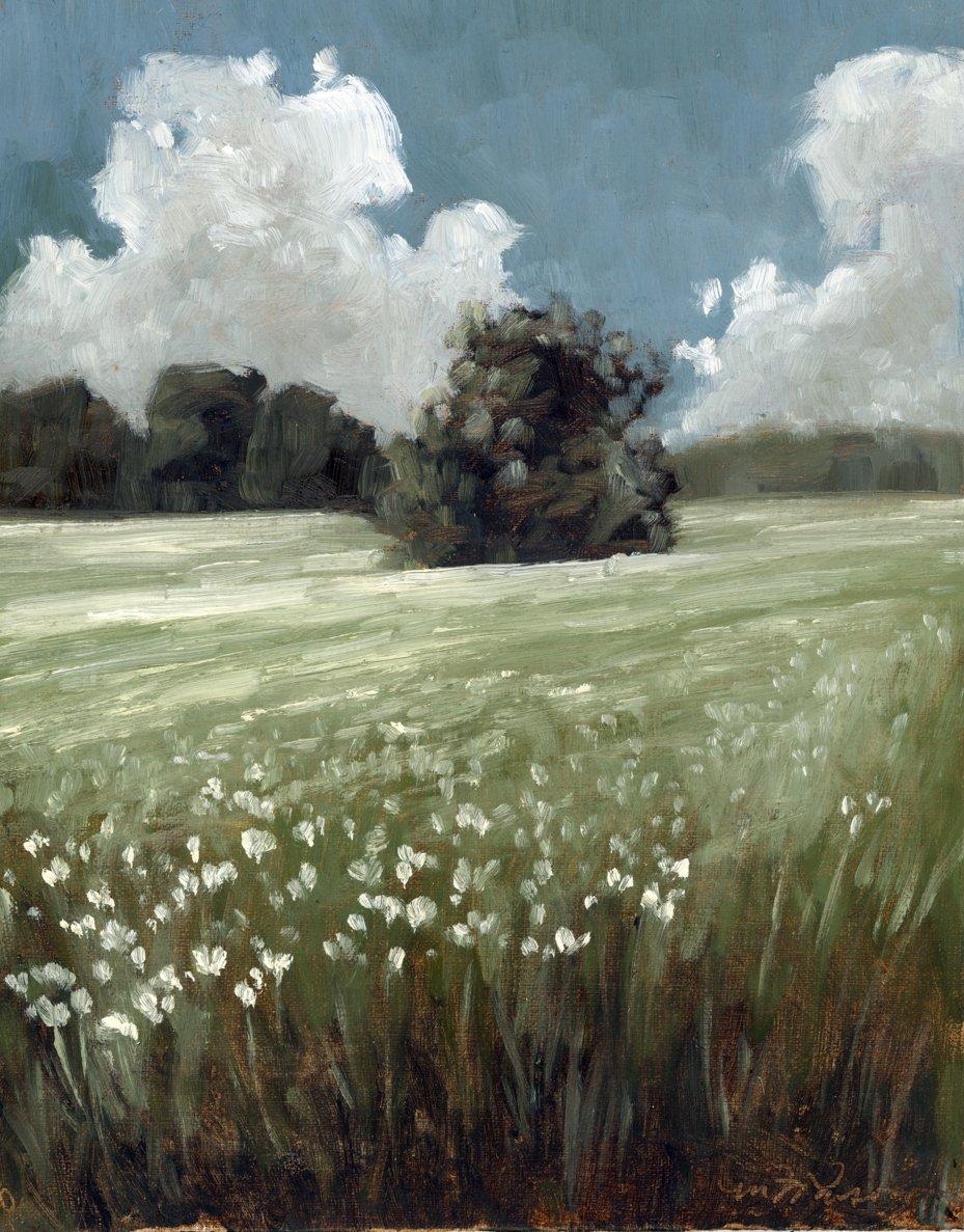 wildflower field | original oil painting | marian parsons | miss mustard seed