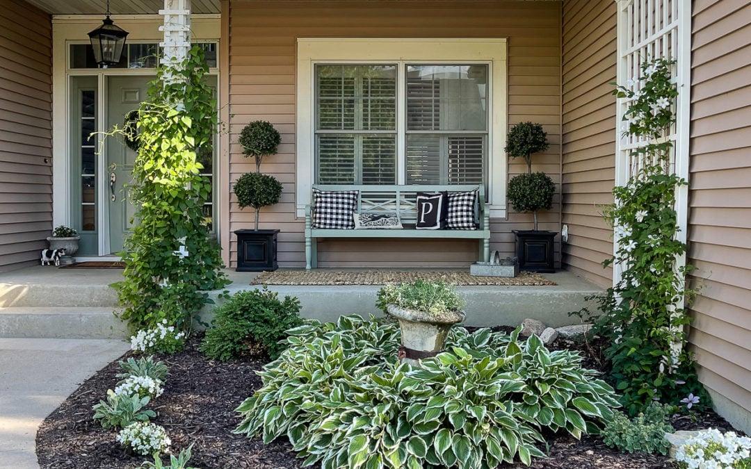 front garden | summer of 2021