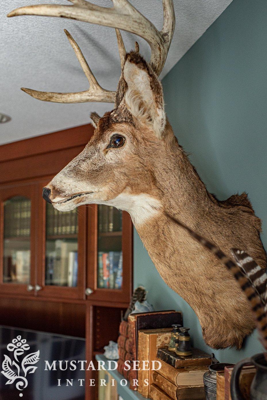 basement family room makeover | vintage deer head | miss mustard seed