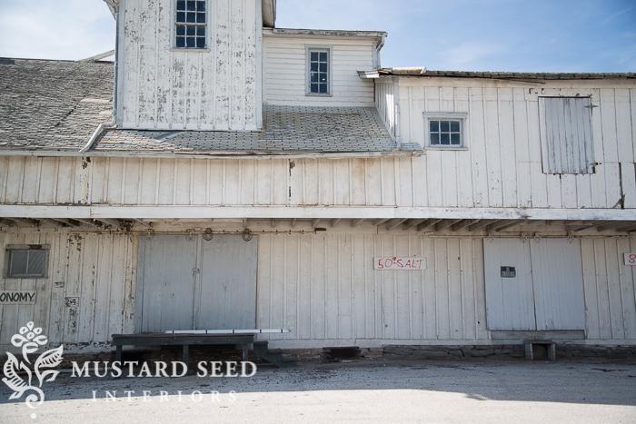 Miss Mustard Seed-0686