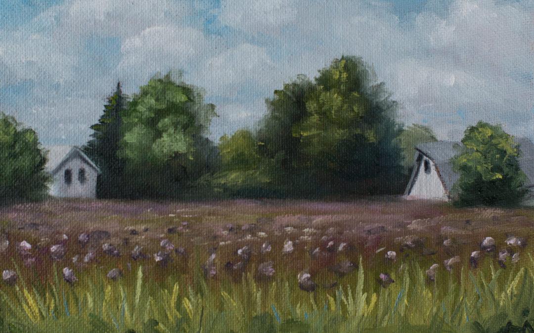 100 meadows project | no. 41-60