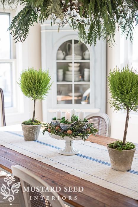 DIY Christmas decorations | Lemon Cypress Topiaries | missmustardseed.com
