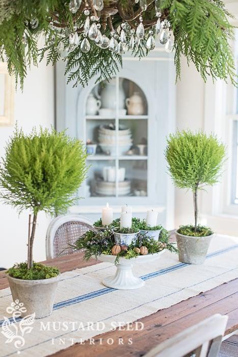 DIY Christmas decorations | Plant Aesthetics | missmustardseed.com