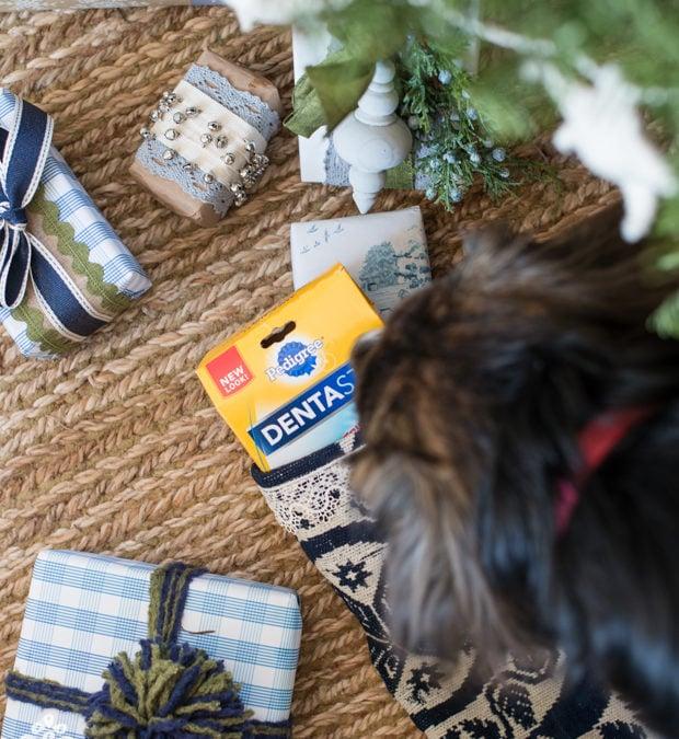 Doggie Gift Guide
