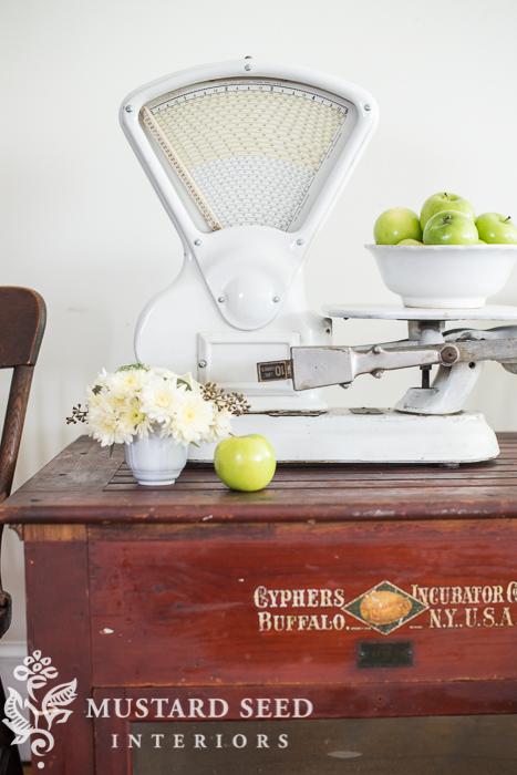 antique chicken incubator   miss mustard seed