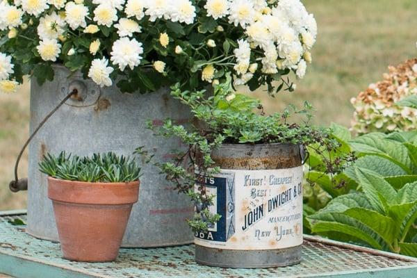 aging terra cotta pots | miss mustard seed